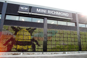 mini-richmond-moss-wall
